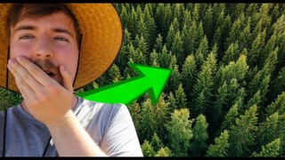 Mr Beasts plants 20'000'000 TREES