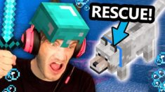 Saving my Minecraft Dog At ALL COSTS!