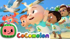 Sea Animal Song | CoCoMelon Nursery Rhymes & Kids Songs