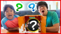 What's in the Box Family Challenge with Ryan! Surprise Animals inside?!