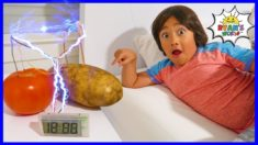 Potato Clock Easy DIY Science Experiment!!!
