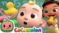 Five Senses Song | CoComelon Nursery Rhymes & Kids Songs