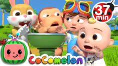 Wait Your Turn + More Nursery Rhymes & Kids Songs – CoComelon