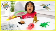 Ryan's bug catching with animals pretend play and learn animals facts!!!