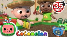Gardening Song  + More Nursery Rhymes & Kids Songs – CoComelon