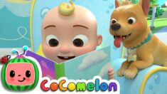 Quiet Time Song | CoComelon Nursery Rhymes & Kids Songs