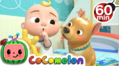 Quiet Time + More Nursery Rhymes & Kids Songs – CoComelon