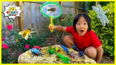 Ryan's Bug Hunting the backyard at home Pretend Play!!!