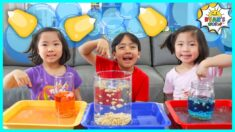 Dancing Corn Easy DIY Science Experiments for kids to do at home!!