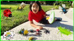 Kids Bug Hunt at home and learn about Bugs facts with Ryan!