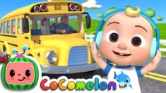 Wheels On The Bus – ABC Song – Baa Baa Black Sheep  + More CoComelon Nursery Rhymes  ...