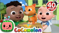 Cody Moves Next Door Song + More Nursery Rhymes & Kids Songs – CoComelon