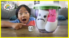 Giant Marshmallow in a Vacuum Easy DIY Science Experiment for kids!