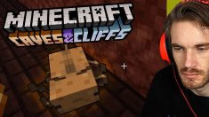 NEVER Bring Your Minecraft Axolotl to the Nether…….