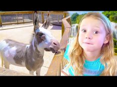 Nastya visits the zoo and learns how to take care of animals