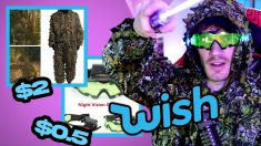 Is Wish A Scam ?
